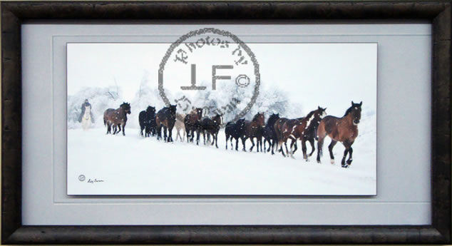 Framed Hand-signed Photographs by Liz Twan - Click