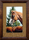thumbnail of Framed Hand-signed Photographs by Liz Twan - Click